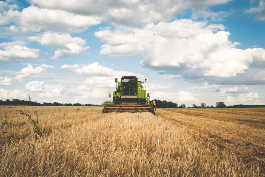 blog 07 - farm