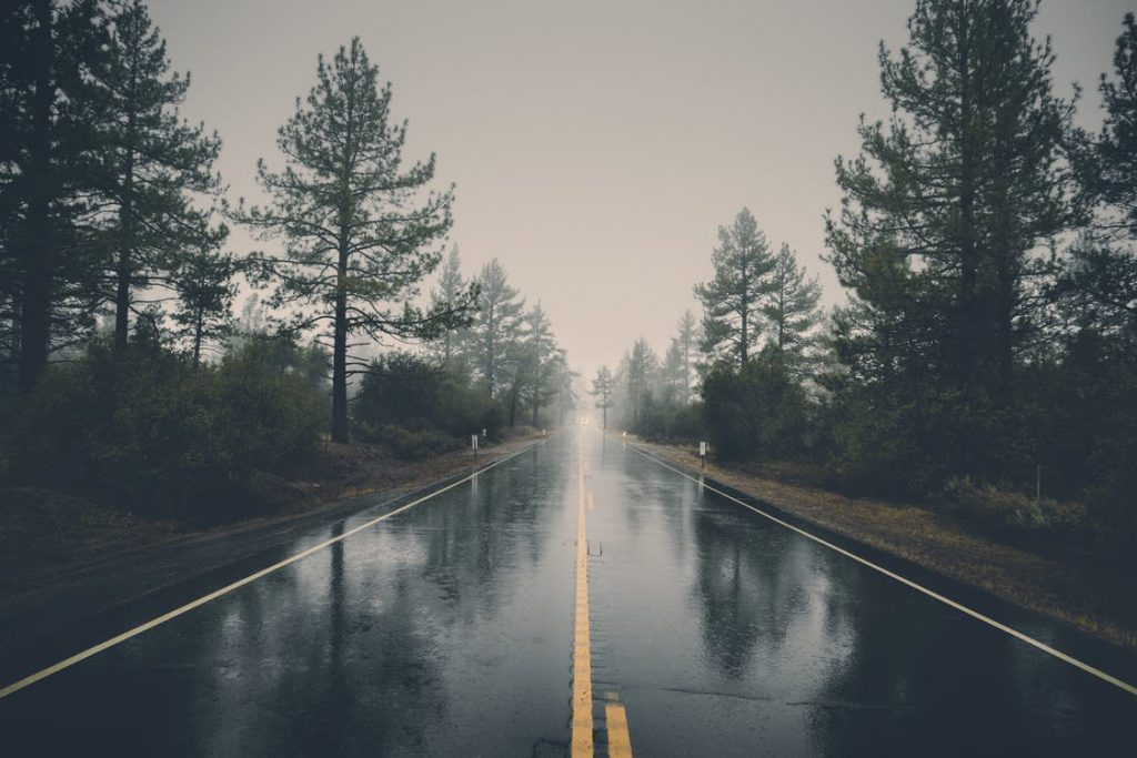 Blog 18 - rainy road